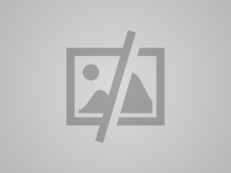 Smrekov lubadar - 2
