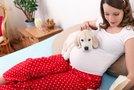 Pes in nosečnica