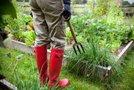 Vrtnar pri delu