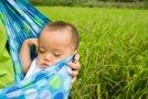 Kitajski dojenček