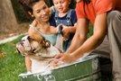 Družina kopa psa