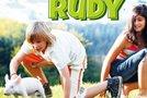 Dirkalni pujsek Rudi 2