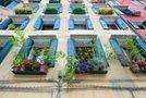 Mediteransko okno polno cvetja