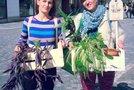 Zavetišče za zavržene rastline