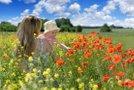 Cvetenje trav