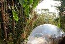 Mehuček v džungli