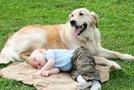 Pes in dojenček