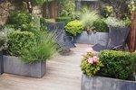 urbani vrt - naslovna
