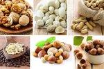 Oreški in semena