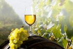 Polsladko belo vino