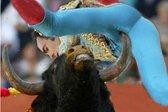 Bikoborbe: ko živali udarijo nazaj - 13