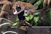 Grozljiv napad leoparda - 1