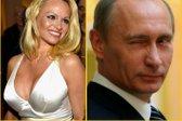 Putin Pamela
