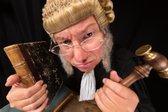 Sodnik