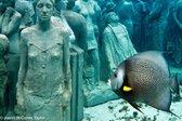 Podvodno mesto v Karibskem morju - 19