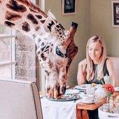 Hotel Giraffe Manor, zajtrk z žirafo