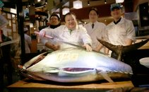 Prodali tuno - 2