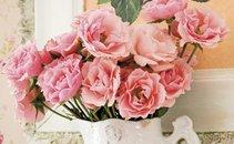 Motiv vrtnice - 15