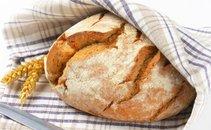 Hlebec kruha