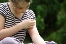komarjev pik