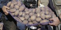 Vreča krompirja