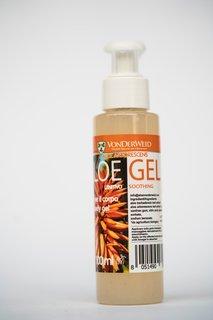 Aloe vera - 6