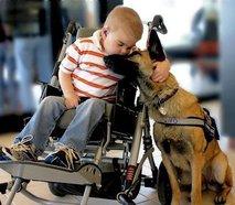 Deček in pes - 1
