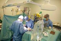 presaditev ledvice