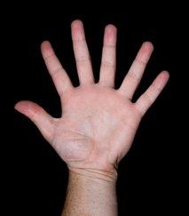 šest prstov na roki