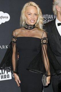Spremenjena Pamela Anderson - 4