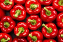 Rdeča paprika
