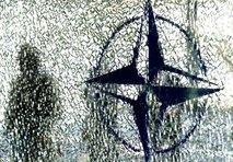 Znak zveze NATO
