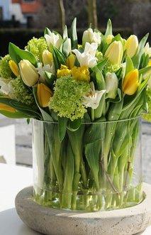 Cvetje, pomlad