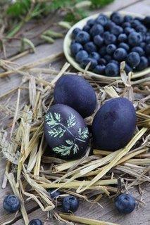 Jajca, barvana z borovnicami