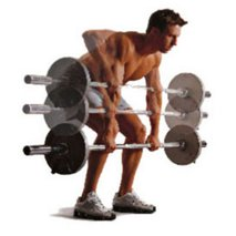 Moč in mišice v zgornjem delu telesa - 1