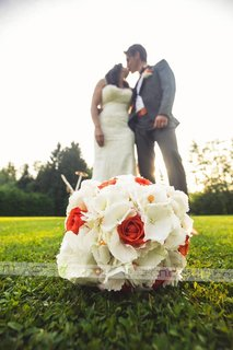 Sanjska poroka Mateje in Braneta