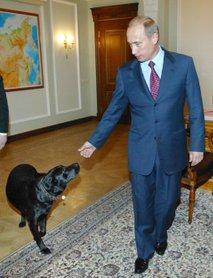 Vladimir Putin in Koni