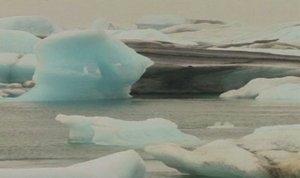 Ledeniki se krčijo