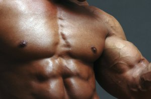 mišice