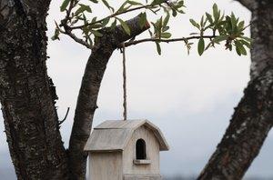 Ptičje hiške - 9