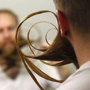Brki in brade - 16
