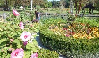 Vrt v Arburetumu