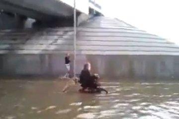 Pes potiska človeka po poplavljeni ulici