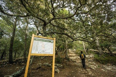 Začetna točka je parkirišče za cerkvijo Ermita de la Trinitat ob vznožju Talaia Vella