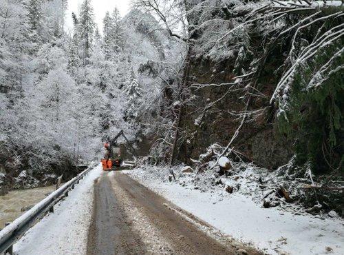 Pot v Logarsko dolino - 3