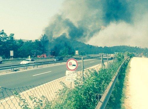 Požar pri avtocesti