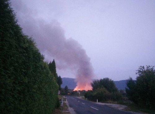 Požar v Ekosistemih zjutraj