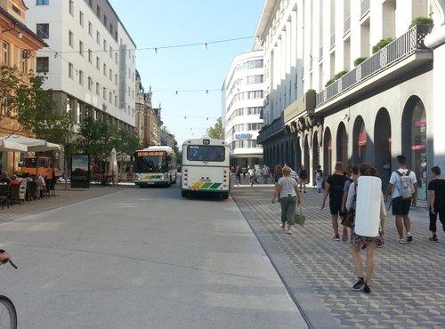 Slovenska cesta spet prevozna - 6