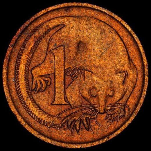 Kovanci - 5