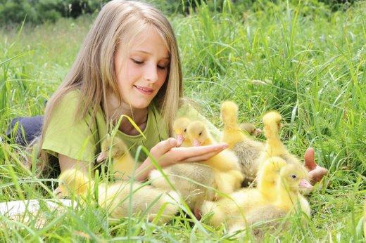 Otrok in žival
